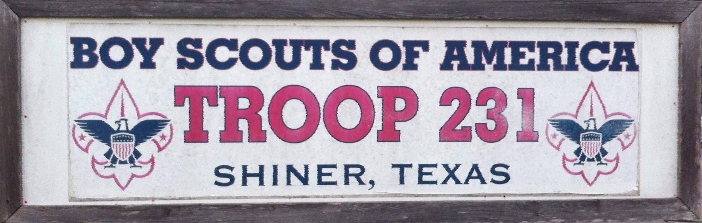 SHINER TROOP 231